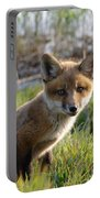 Red Fox Kit Portable Battery Charger