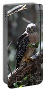 Red - Shouldered Hawk II Portable Battery Charger