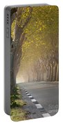 Saint Remy Trees Portable Battery Charger