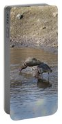 Shorebirds Portable Battery Charger
