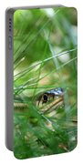 Snake In The Grass Portable Battery Charger