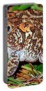 Southern Toad Bufo Terrestris Portable Battery Charger