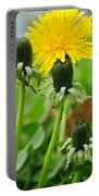Standing Tall Portable Battery Charger