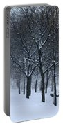 Stormy Weather Portable Battery Charger