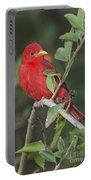 Summer Tanager Portable Battery Charger