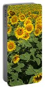 Sunflower Field Portable Battery Charger
