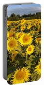 Sunflowers At Dawn Portable Battery Charger