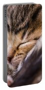 Sweet Small Kitten  Portable Battery Charger