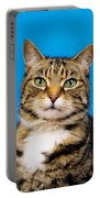 Tabby Cat Portable Battery Charger