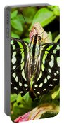 Tailed Jay Butterfly Portable Battery Charger