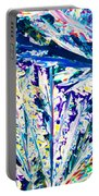 Tartaric Acid Crystals In Polarized Light Portable Battery Charger