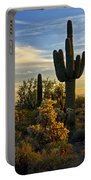 The Golden Southwest  Portable Battery Charger