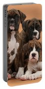 Three Boxer Puppies Portable Battery Charger