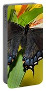 Tiger Swallowtail Butterfly, Dark Phase Portable Battery Charger