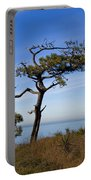 Torrey Pines State Park - California Portable Battery Charger