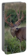 Two In The Bush Portable Battery Charger by Jim Garrison