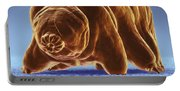 Water Bear Tardigrades Portable Battery Charger