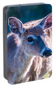 White Tail Deer Bambi In The Wild Portable Battery Charger