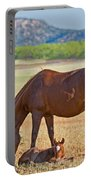 Wild Horses Mother And Foal Portable Battery Charger