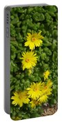Yellow Ice Plant In Bloom Portable Battery Charger