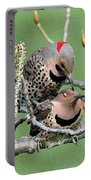 Yellow-shafted Northern Flickers Portable Battery Charger