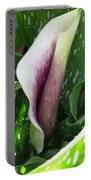 Zantedeschia Named Picasso Portable Battery Charger