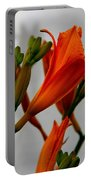 2013 Day Lilies Portable Battery Charger