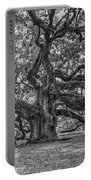 Angel Oak Tree In Black And White Portable Battery Charger
