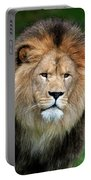 Lion Dafrique Panthera Leo Portable Battery Charger