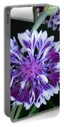 Bachelor Button From The Frosted Queen Mix Portable Battery Charger
