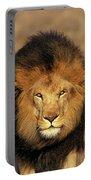 Lion Dafrique Panthera Leo Portable Battery Charger