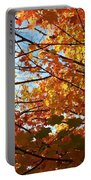 Fall Explosion Of Color Portable Battery Charger