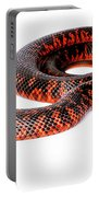 Australian Reptiles On White Portable Battery Charger