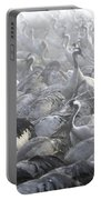 Flock Of Common Crane  Portable Battery Charger