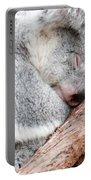 Adorable Koala Bear Taking A Nap Sleeping On A Tree Portable Battery Charger