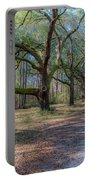 Allee Of Oaks Portable Battery Charger