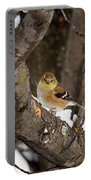 American Goldfinch In Winter Portable Battery Charger