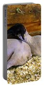 3 Animals Portable Battery Charger