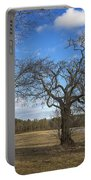 3 Appleton Trees Portable Battery Charger