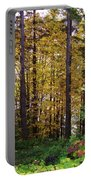Autumn 5 Portable Battery Charger