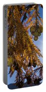 Autumn Coniferous Portable Battery Charger