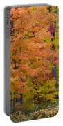 Autumn Forest Portable Battery Charger