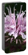 Bee Balm From The Panorama Mix Portable Battery Charger