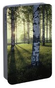 Birch Trees By The Vuoksi River Portable Battery Charger