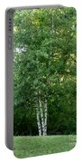 3 Birch Trees On A Hill Portable Battery Charger