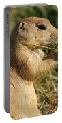 Black-tailed Prairie Dog Portable Battery Charger