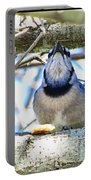 Blue Jay With Bread  Portable Battery Charger