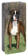 Boxer Dog Portable Battery Charger by Johan De Meester