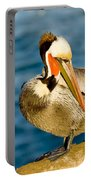 Brown Pelican Preening Portable Battery Charger