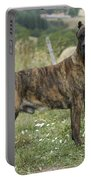 Canary Dog Portable Battery Charger